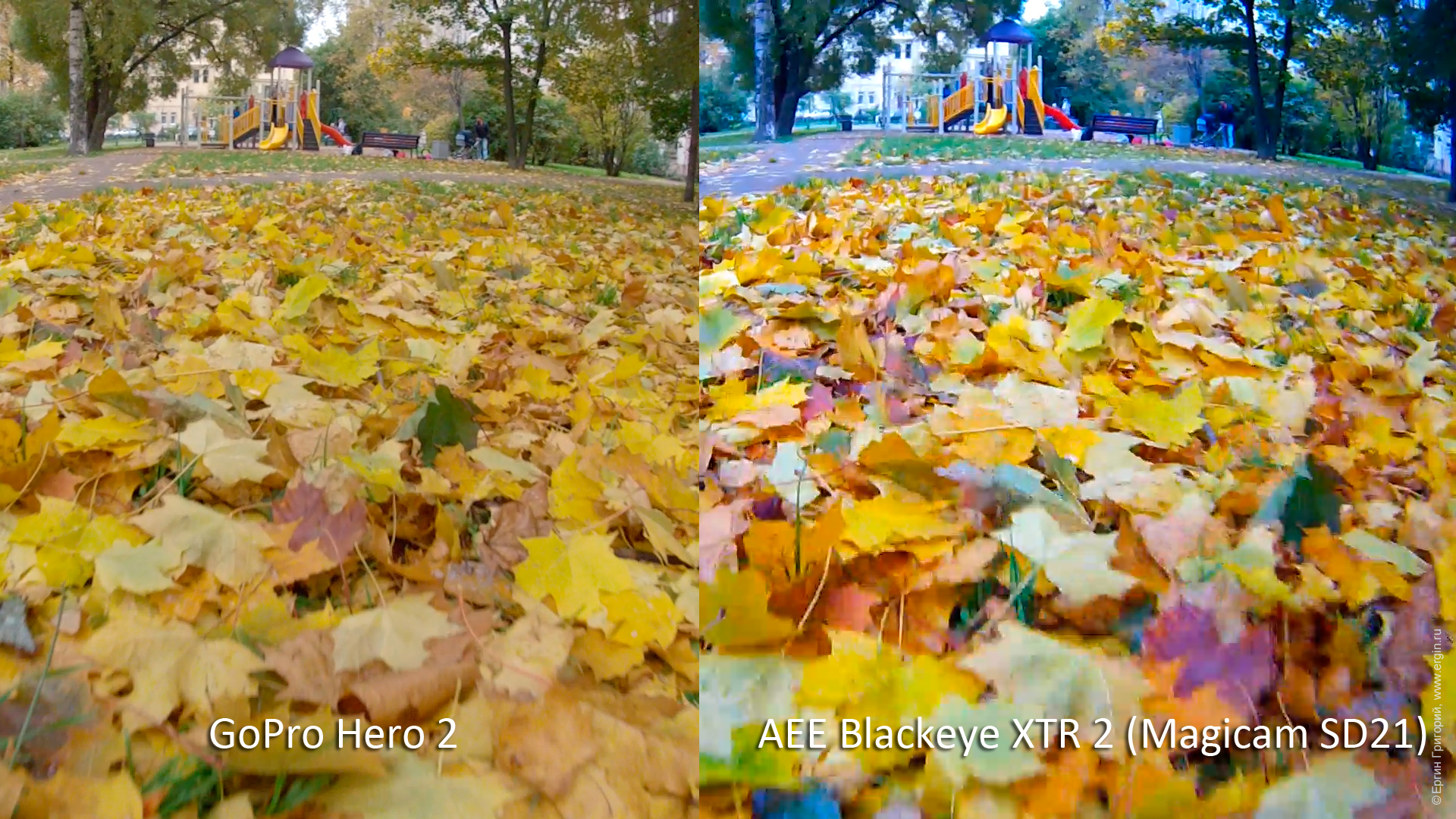 AEE Blackeye XTR 2 (AEE Magicam SD21) vs GoPro Hero 2: опавшие листья и синева