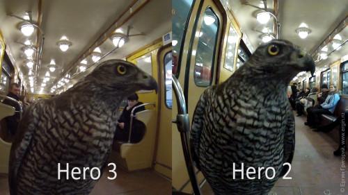 Детали оперенья у хищной птицы GoPro Hero 3 меньше шумов, чем у Hero 2