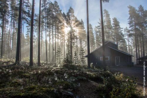 Солнце сквозь туман Нейтикоски