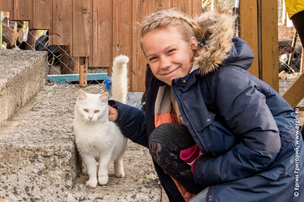 Дети и котики: девочка и кошка