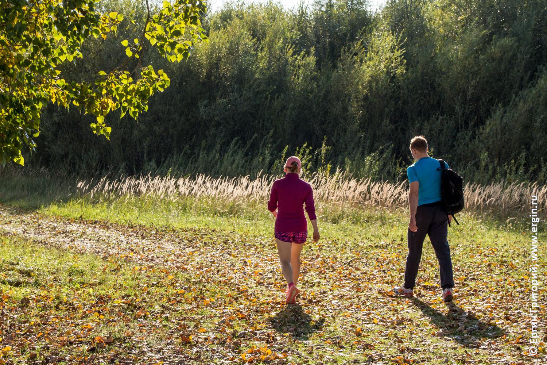 Прогулка к лебедям в Платтлинге осенью