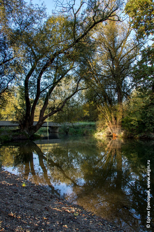 Платлинг деревья над водой