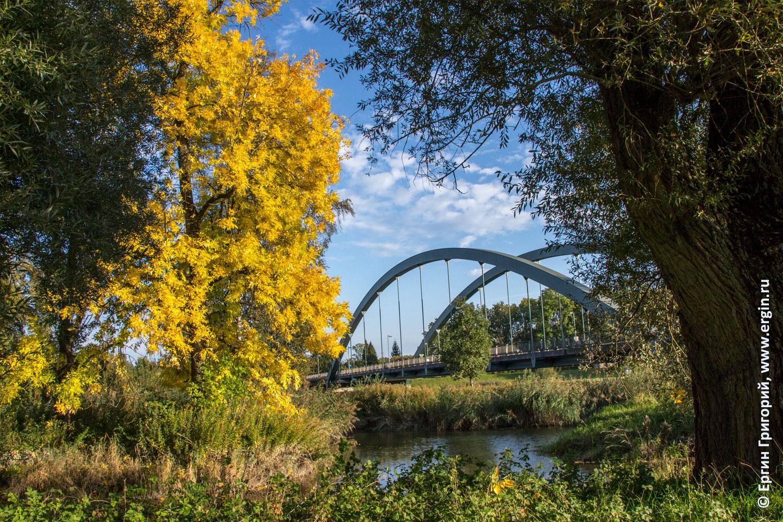 Осенний Платтлинг листья мост