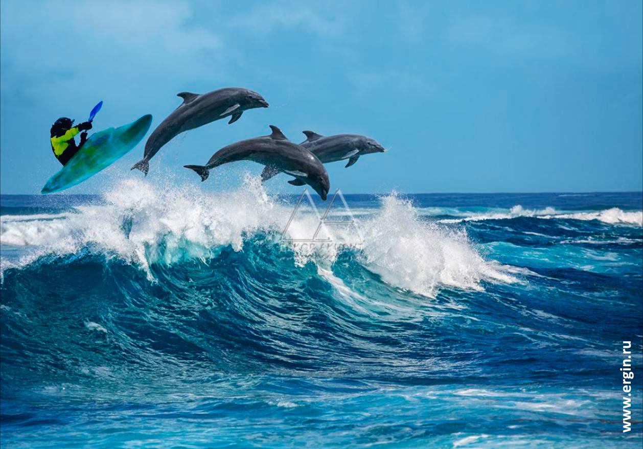 Каякер и дельфины летят над волнами