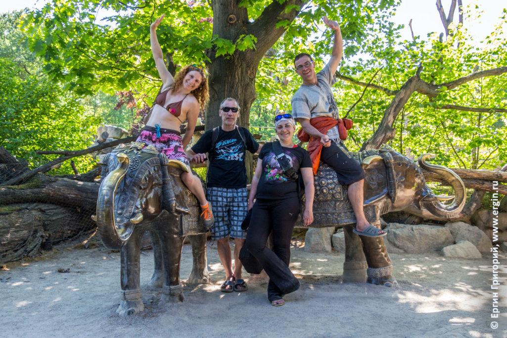 В зоопарке в Праге на слонах