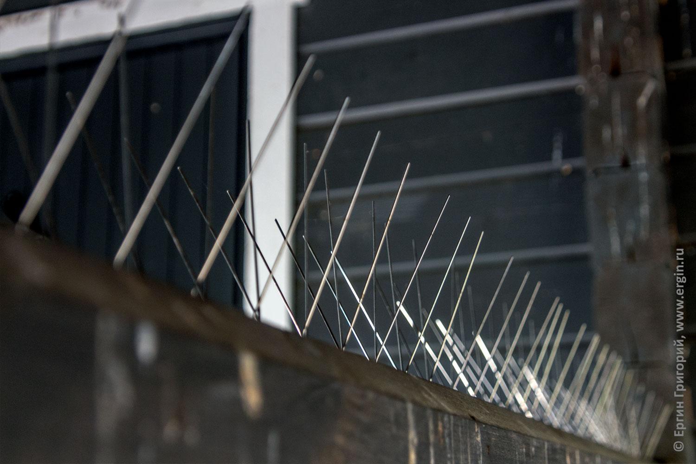 Стальные спицы заграждения от ласточке в кемпинге Нейтикоски Лиекса