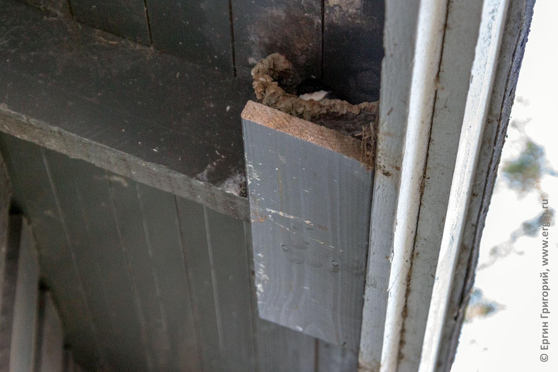 Специально прибитая к крыше доска для ласточкиных гнезд