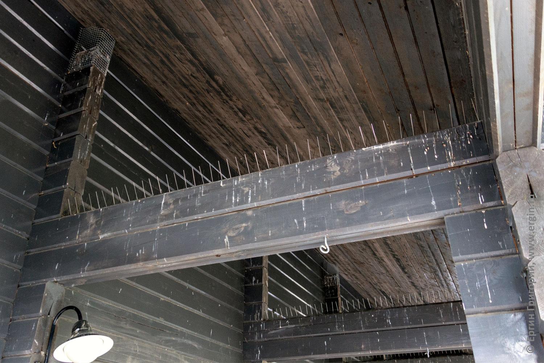 Защитные приспособления от ласточек в Лиексе