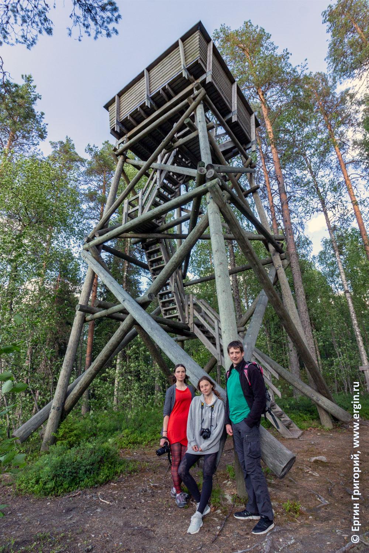 Смотровая башня Лиекса Нейтикоски