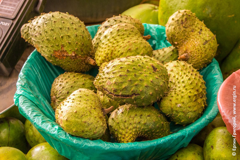 Сметанное яблоко Сирсак Саусеп в Уганде