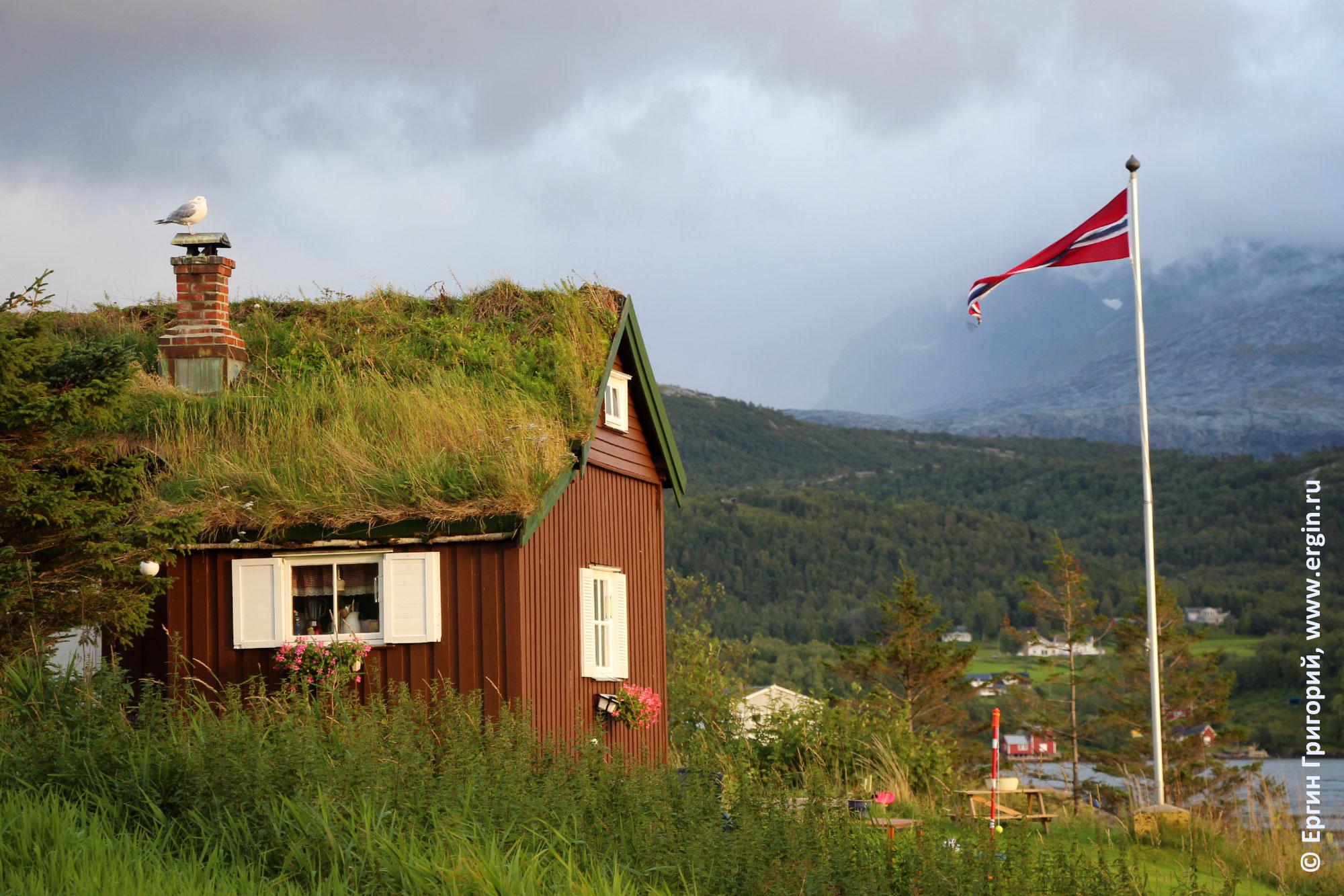 Норвегия типичный пейзаж заросшая травой крыша и флаг на флагштоке
