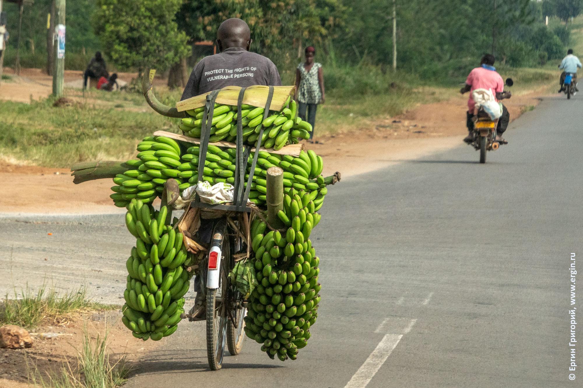 Бананы на велосипеде велорюкзак по-угандийски
