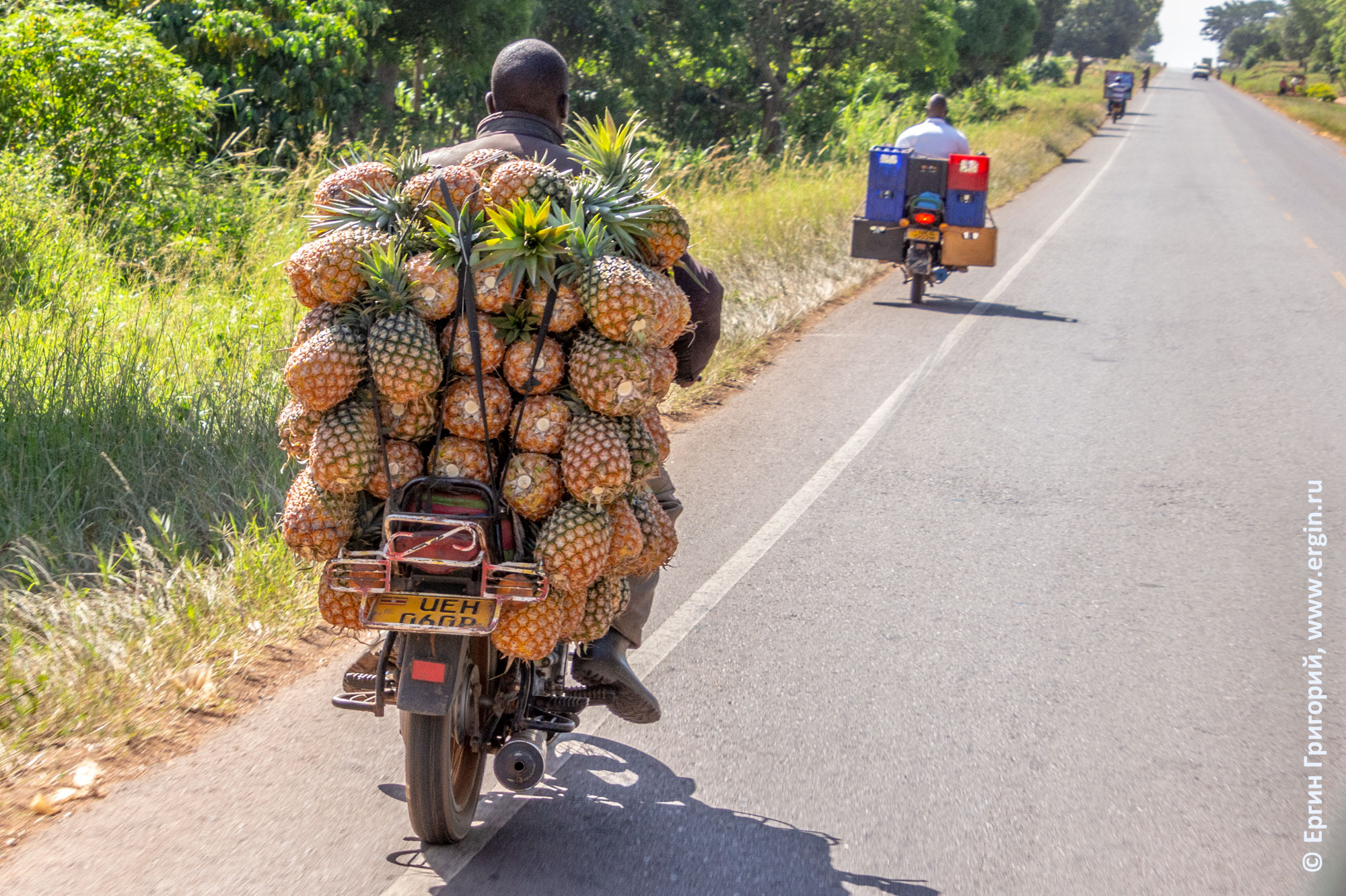 Бода-бода везет анансы на мотоцикле Уганда