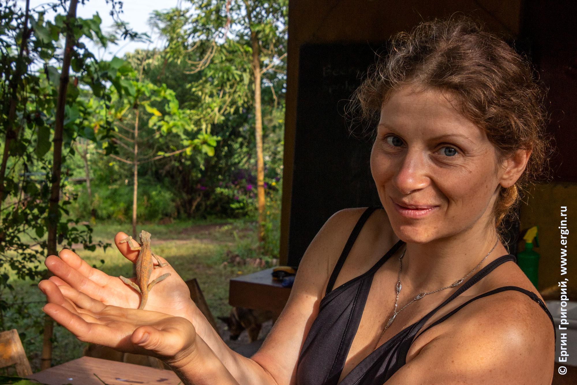 Девушка держит на руке хамелеона