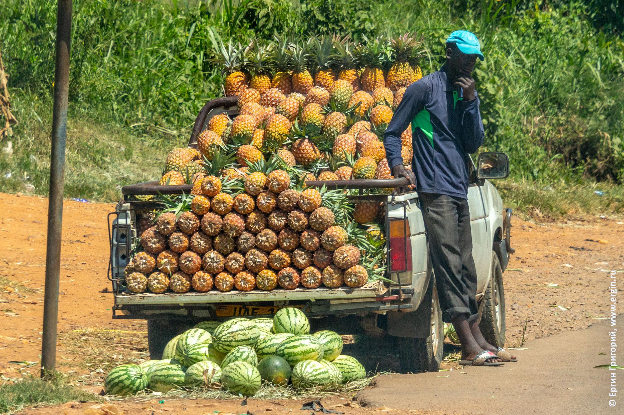 Ананасы на машине Африка Уганда