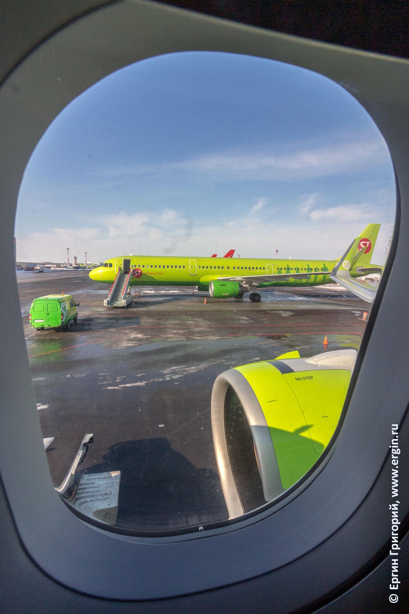 самолет S7 аэропорт Толмачево
