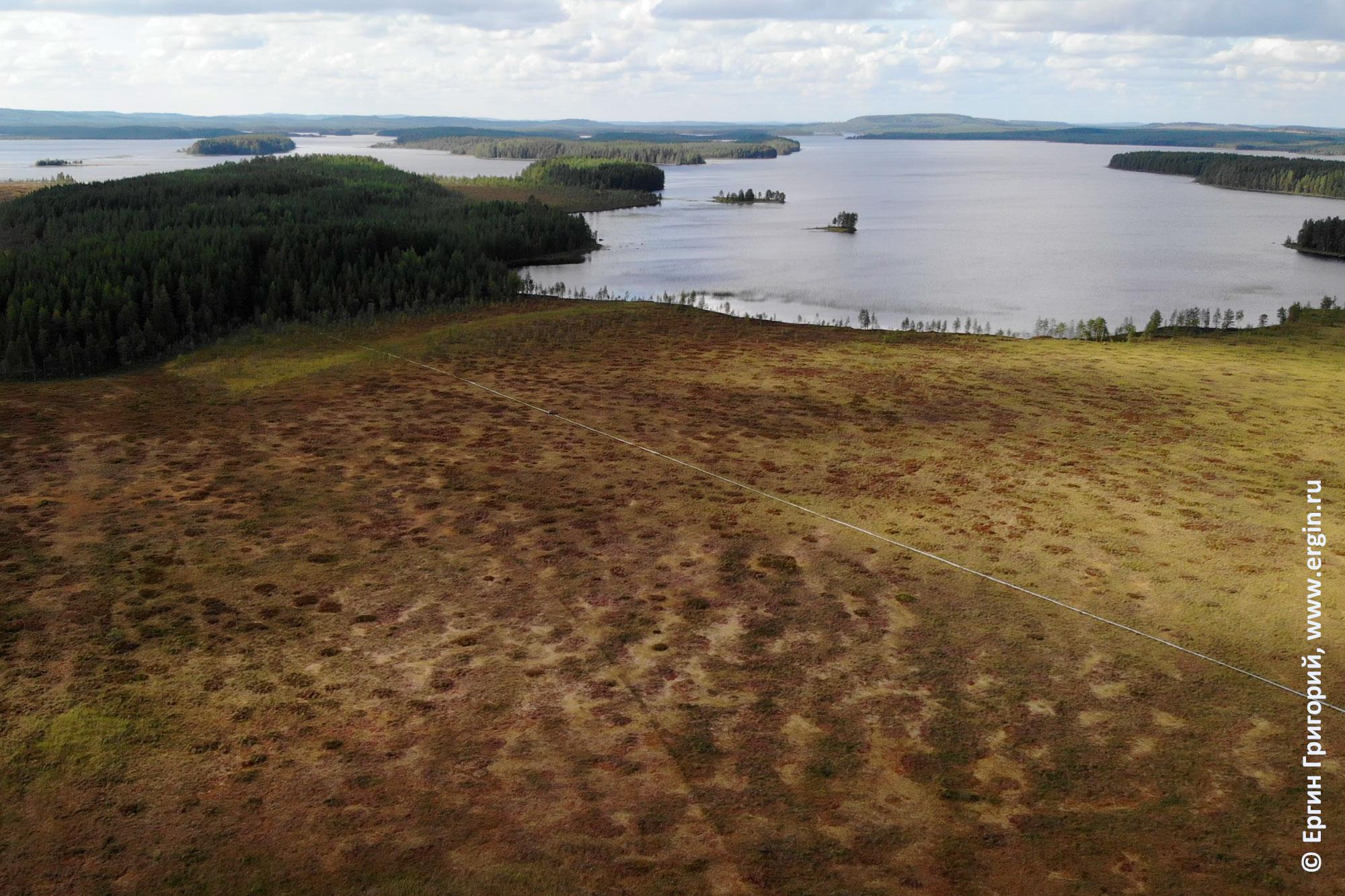 Деревянная дорожка через финские болота