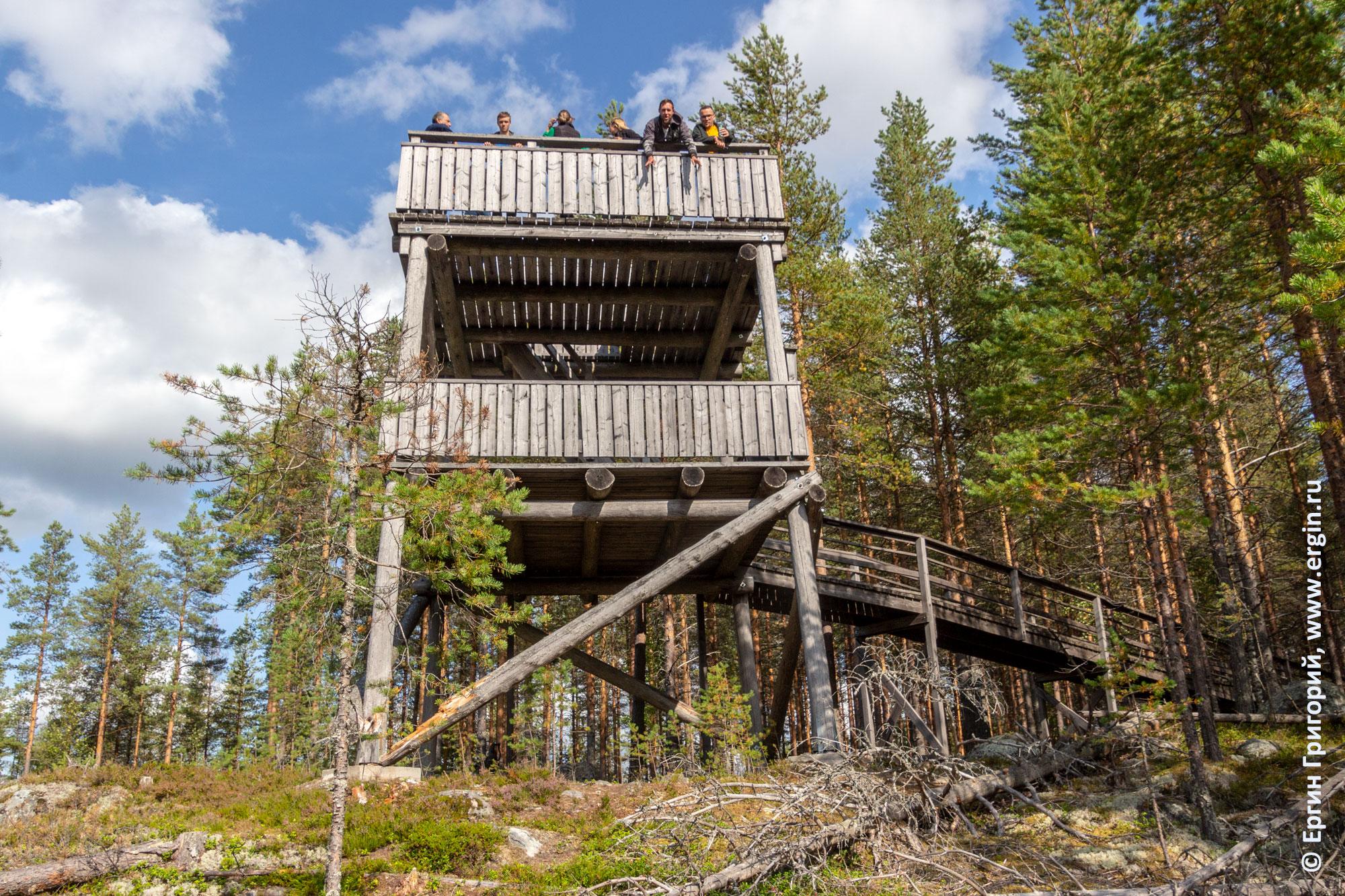 Смотровая башня в Финляндии заповедник Руунаа Лиекса