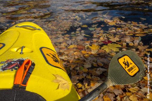Весло и каяк над желтой листвой в воде Большого канала Каменного острова Санкт-Петербурга